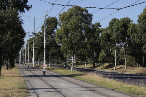 Reserved track on route 86 outside La Trobe University on Plenty Road, Bundoora