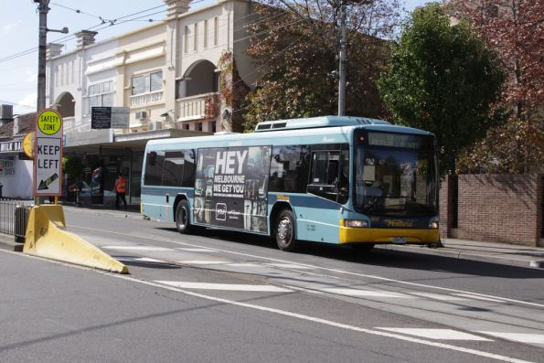 Ventura #869 4369AO with a tram replacement service on Glenferrie Road