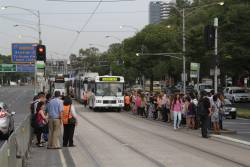 Crowds of passengers wait on Flemington Road for citybound trams and outbound buses