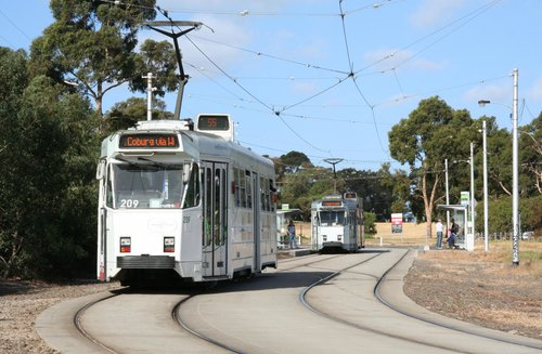 Z3.209 waits for Z3.137 up ahead at Royal Park