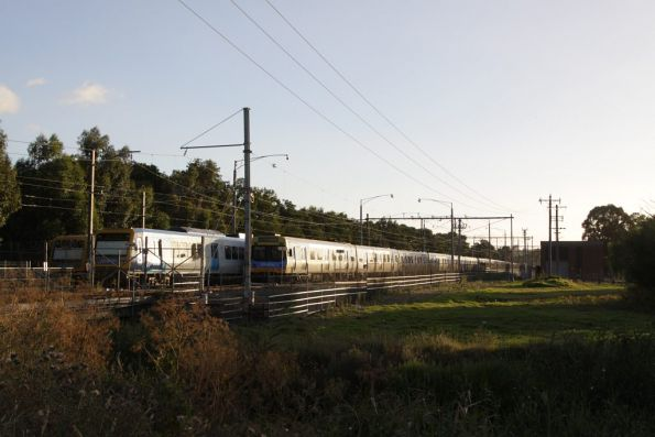 Stabled trains at the down end of Lilydale Yard