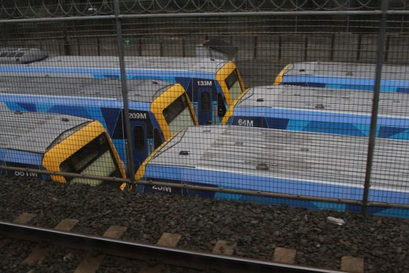 X'Trapolis trains stabled at Ringwood