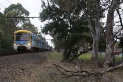 Siemens train approaches Noble Park on the up