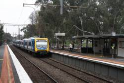 X'Trapolis arrives into Macleod with a down Hurstbridge service