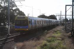 EDI Comeng 319M arrives into Werribee platform 1