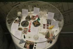 Display of European artefacts found during the archaeological dig