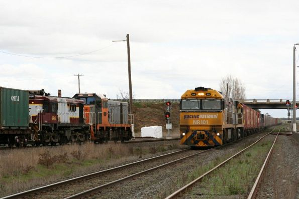 Crossing PN liveried NR101 and NR52 at Gheringhap