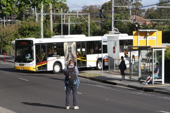 Ventura articulated bus #842 departs Blackburn station