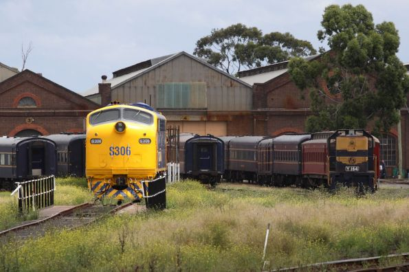 S306 and Y164 in the Steamrail yard