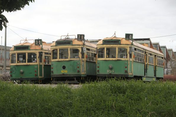 Trams of Australia