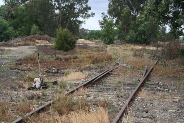 Turntable road at Benalla covered with weeds