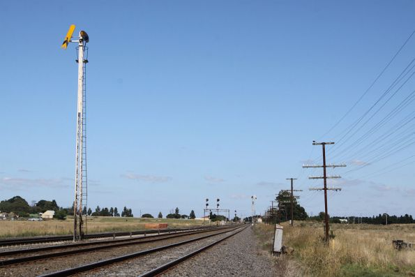 Up distant signal at Donnybrook