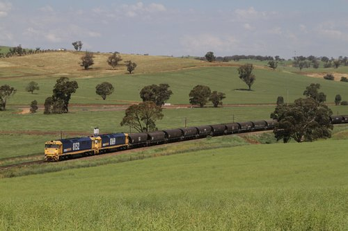 8152 and 8169 lead a grain train north out of Cootamundra