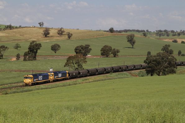 8152 and 8169 lead a grain train north out of Cootamundra at Jindalee