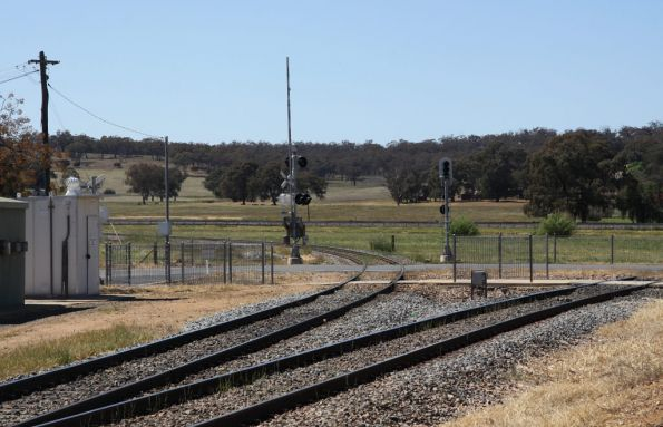 Triangle at Cootamundra West leading to the Main South (L to R)