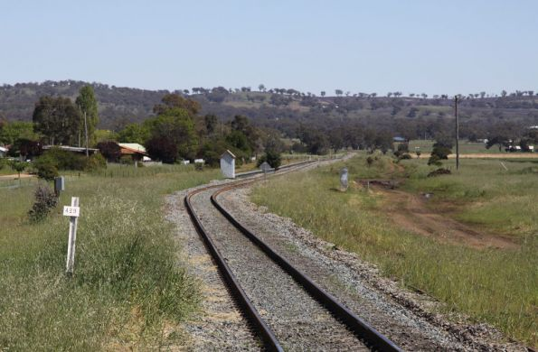 Looking down the line from Cootamundra West