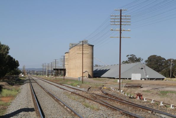 Down end of the sidings at Illabo
