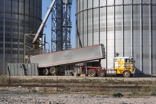 Semi trailer tipping a load of grain into the silo receival chute