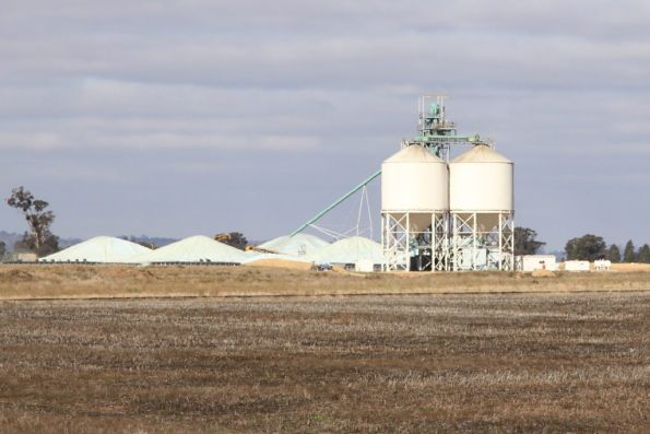 Loading silos and grain stockpiles at the GrainFlow terminal