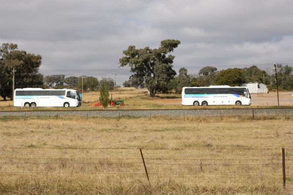 Pair of CountryLink road coaches parallel the Main South outside Cootamundra