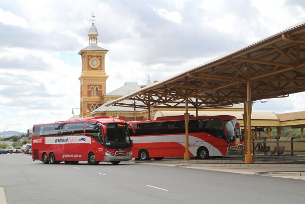 Greyhound and NSW TrainLink road coaches at Albury station