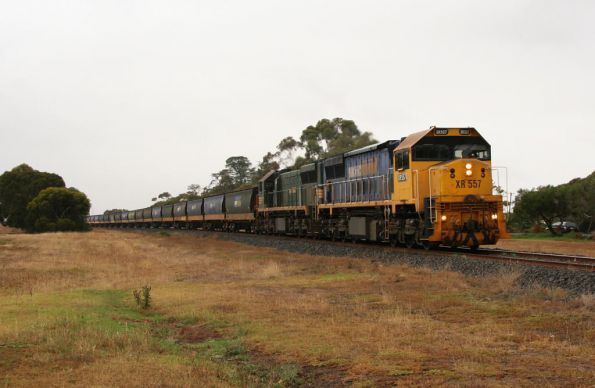 XR557 and XR554 round the curve into Bannockburn