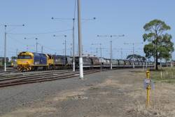 G536, X41 and XR558 stabled in North Geelong Yard with a rake of grain wagons
