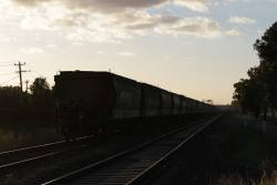 G529 leads XR553 and X44 west towards Ardeer with a down grain