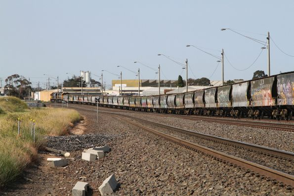 Tail end of a broad gauge train waiting at North Geelong C for their turn around the grain loop