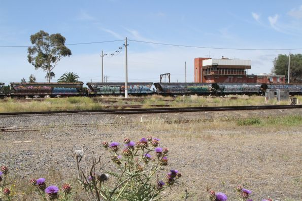 Grain wagons at Tottenham Yard, bound for repairs at North Geelong Yard