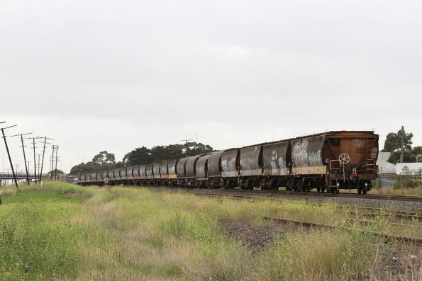 Another handful of NSW grain hoppers amongst the Victorian hoppers