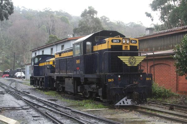 Diesel locomotives DH5 and D21 stabled at Belgrave