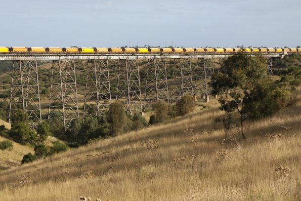 Some of the 45 AGWF class (ex-Westrail) grain hoppers cross the Maribyrnong