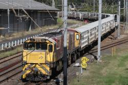 Aurizon 2387 and 1753 leads an empty cattle train rolls along the Exhibition Loop near the Ekka