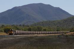 Aurizon 4000 class diesel hauls an empty coal train from Abbot Point, beside the North Coast line at Euri