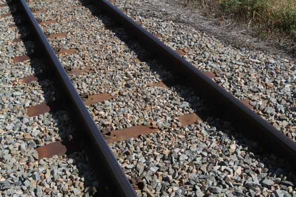 Steel sleepered track in the North Coast line at Bowen