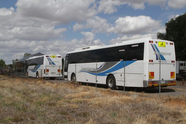 Jacobson Coach Tours buses parked in Murchison