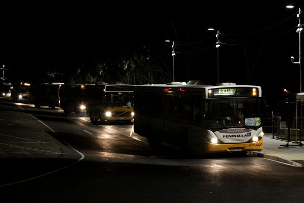 Queue of buses at Flemington Racecourse after evening peak