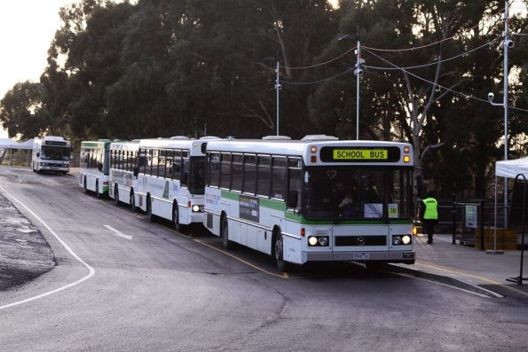 Lineup of buses waiting to depart the interchange at Flemington Racecourse