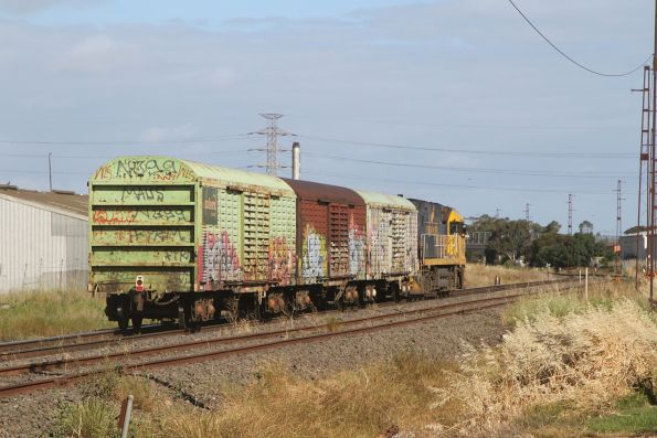 Indian Pacific liveried NR27 leads the down Sadleirs transfer through Brooklyn