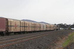Box vans in the consist of the up SCT train at Lara