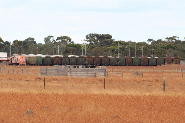 Stored Westrail H class among SCT box vans at Laverton