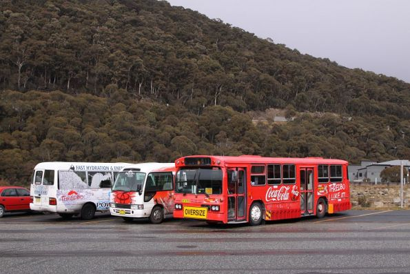 Shuttle buses parked at Thredbo - ex-STA rego AV34PD in the foreground