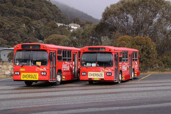 Shuttle buses parked at Thredbo - ex-STA vehicles, regos AV33PD and AP59LD