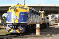 CFCLA S300, SSR liveried T376 and CFLCA T373 at South Dynon