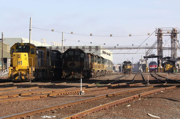 Locos shuffled around a tad at South Dynon - H1 and an X class alongside the stored locos, N class at the fuel point