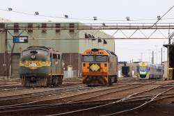 A73, BL32 and VL18 stabled at South Dynon