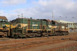 Pair of unnumbered Freight Australia liveried Y classes at South Dynon