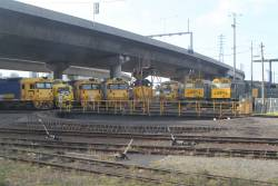 BL26, GM10, BL30, BL27, X50, GM22, 442s2 and 442s5 stabled around the South Dynon standard gauge turntable