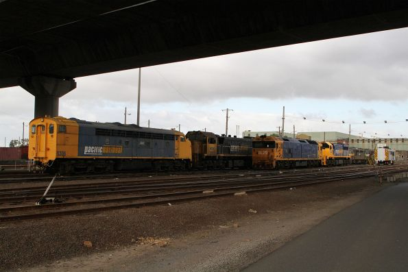 S306, X41 and BL29 stabled at South Dynon